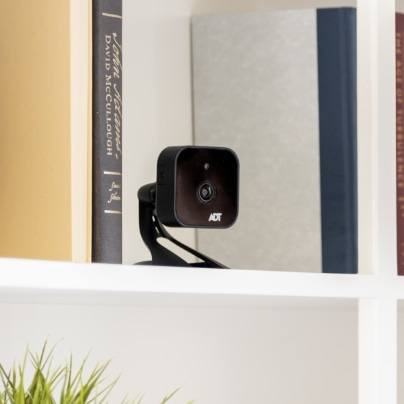 Lancaster indoor security camera